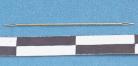 kleine Nadel/small needle